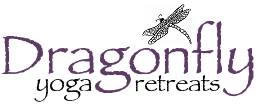 Dragonflyyogaretreats