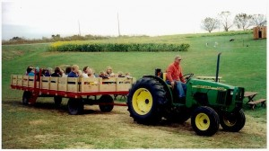 Tractor-Hayrides-at-The-Peach-Tree-Farm-in-Boonville-Missouri